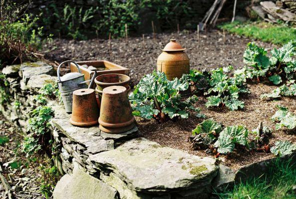 Beatrix Potter's garden at Hilltop