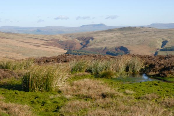 Penyghent from the Forest of Bowland